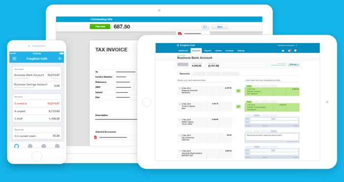 Xero Accounting Across Devices